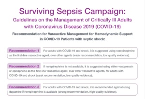 Surviving Sepsis Campaign vasopressin